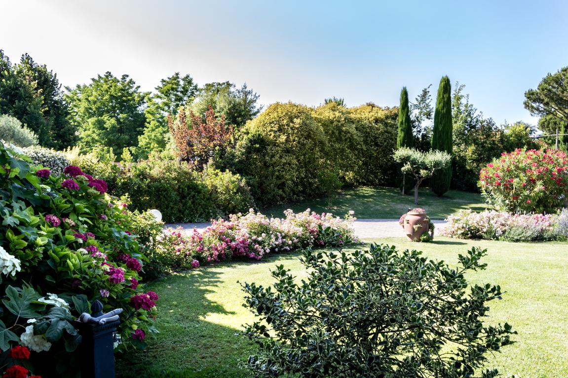 Servizi per il Verde - Progettazione Giardini | Cooperativa Il Mandorlo